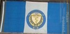 [Naas, Kildare flag]