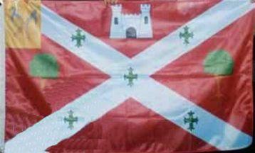 [Castlebar town flag]