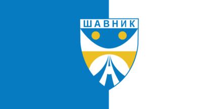 [Flag of Shavnik?]
